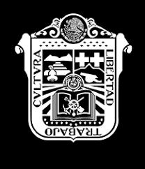 formato de pago del estado de mexico 2015 portal de servicios al contribuyente