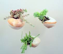 lovely diy hanging planters