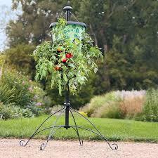 amazon com topsy turvy hummingbird upside down planter red