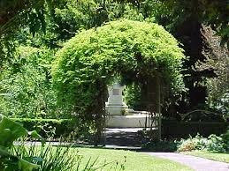 wedding arches geelong geelong botanic gardens garden locations