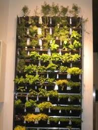 best wall garden indoor pictures interior design ideas