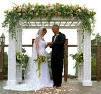 wedding arches at hobby lobby where to rent wedding arch the knot