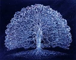 winter solstice tree gallery historic c chesterfield