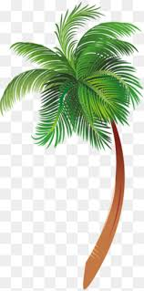 palm tree png vectors psd and icons for free pngtree