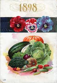 flower food packets 2057 best seed catalogues and packets images on