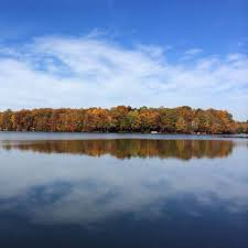 thanksgiving dinner northern virginia fun in fairfax va dine explore and play in virginia dc and