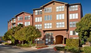 20 best apartments in larkspur ca with pictures