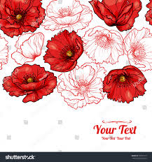 poppies flowers vector poppies flowers horizontal frame stock vector 398791519