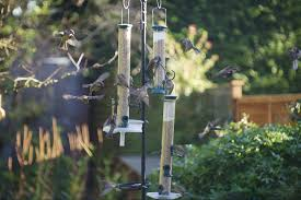 Free Bird Table Plans Uk by Open A Bird Cafe