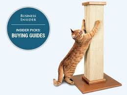 Curved Cat Scratcher The Best Cat Scratching Posts You Can Buy Business Insider