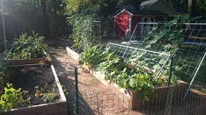 diy trellises for raised bed gardens album on imgur