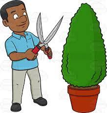 gardening emoji a black man using a shears to shape a hedge on a garden pot