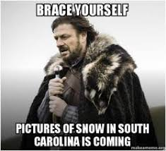 South Carolina Memes - brace yourself pictures of snow in south carolina is coming brace