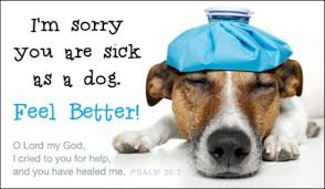 feel better cards free feel better ecard email free personalized get well cards online