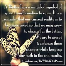 butterfly transformation enlightened book of shadows and
