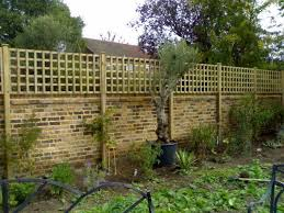 best 25 lattice wall ideas on pinterest backyard privacy
