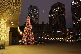 nathan phillips square tree rainforest islands ferry