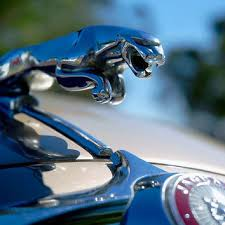 best car ornament products on wanelo