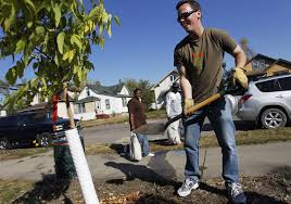 minneapolis to sell 25 trees to promote better air and water
