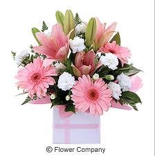 flowers arrangement strawberry sweet boxed flower arrangement fc2053