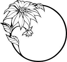 poinsettia coloring pages poinsettia flower free pictures on pixabay