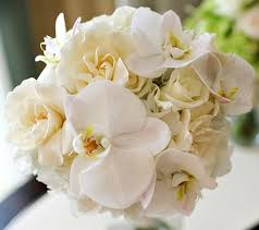 gardenia bouquet shoshona snow le phalaenopsis and gardenia bridal bouquet