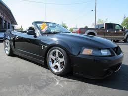 2004 mustang svt 2004 ford mustang svt cobra for sale carsforsale com