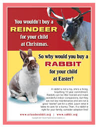 rabbit ramblings monday meme day for easter and a poem