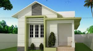 700 square feet single floor contemporary home design