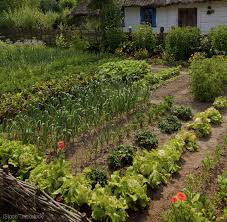 Us Zones For Gardening - get into the permaculture zone hobby farms