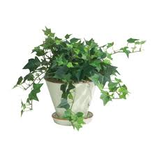 garden decor great picture round big plant pots for
