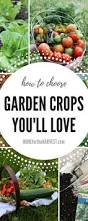 3259 best growing a food garden images on pinterest organic