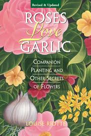 Photos Of Flowers Roses Love Garlic Companion Planting And Other Secrets Of Flowers