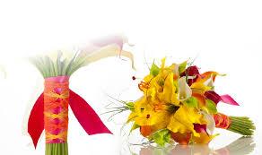 Fresh Cut Flowers Vanderbijl Fresh Cut Flowers 016 932 4041