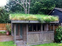 shed roof house shed green roof 1 small scale green roof guide