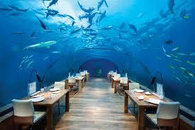 beach resort amazing best resorts for honeymoon reference haammss