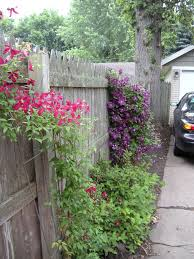 Types Of Fencing For Gardens - 204 best fencing ideas images on pinterest fence ideas garden