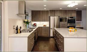 Kitchen Cabinet Knobs Lowes Kitchen Cabinet Knobs Lowes Radionigerialagos