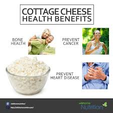 Nutrition Facts For Cottage Cheese by Cottage Cheese Nutrition Facts And Health Benefits