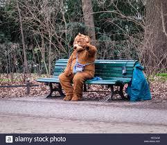 bench berlin man in bear fancy dress costume sitting on bench berlin stock