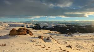 Snow In Sahara Camel In Sahara Desert Egypt Stock Footage Video 24962393