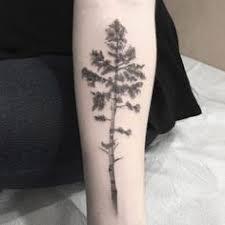 my aspen tree ink and tatting