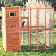 Ferret Hutches And Runs Small Pet Housing Cages Hutches U0026 More You U0027ll Love Wayfair