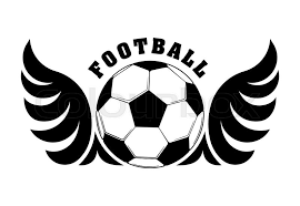 football design with black and white wings and for emblem or