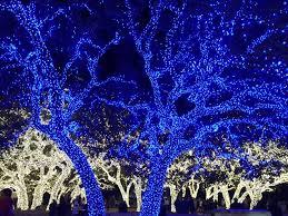 johnson city texas christmas lights 10 reasons to visit texas hill country this holiday season my big