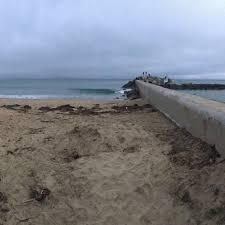 Does Newport Beach Have Fire Pits - corona del mar state beach 743 photos u0026 291 reviews beaches