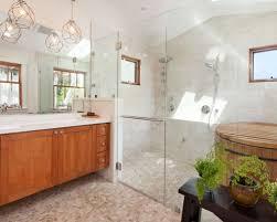 shower light fixture houzz