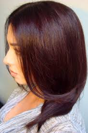 best 25 mahogany brown hair color ideas on pinterest mahogany
