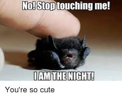 Cute Memes - no stop me i am the night you re so cute meme on me me