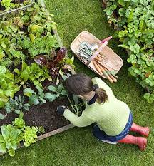 gardens alive organic gardening lawn care and natural pest